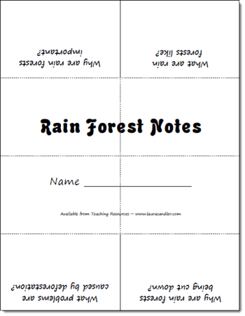 Rain Forest Foldable